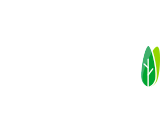 Tiny on Wheels